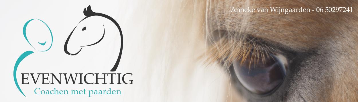 Evenwichtig coachen met paarden